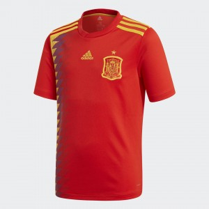 Juventud Camiseta del SPAIN Home 2018